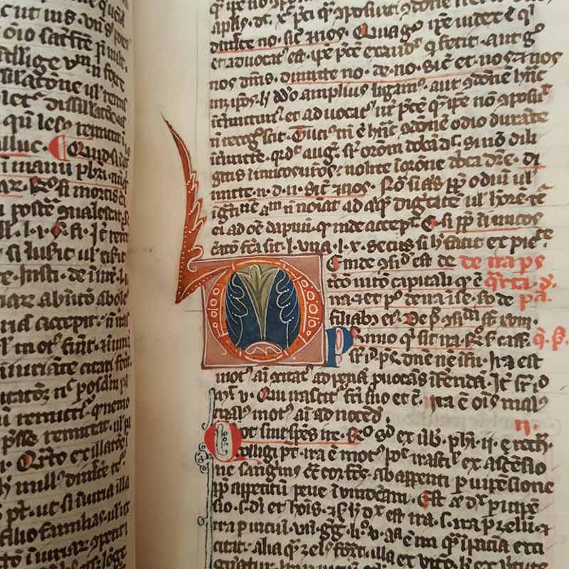 Biblioteca Universitaria di Pavia, Aldini 336, Summa collectionum pro confessionibus audiensis. Membr., XIV sec., 341 cc., 370 x 270 mm.