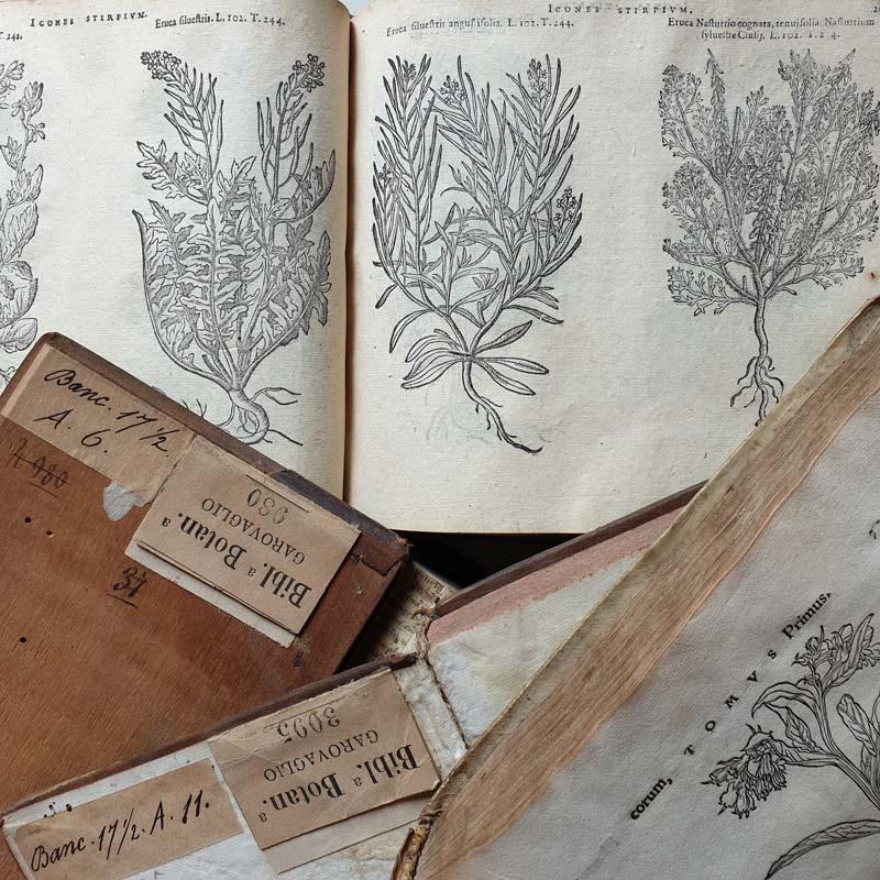 Libri del lascito Santo Garovaglio