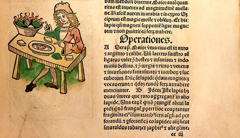 Johannes De Cuba, Hortus sanitatis, Moguntiae, 1491
